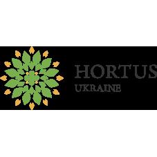 otzyvy_best leasing_hortus